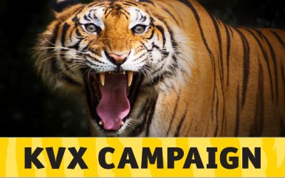 KVX Campaign